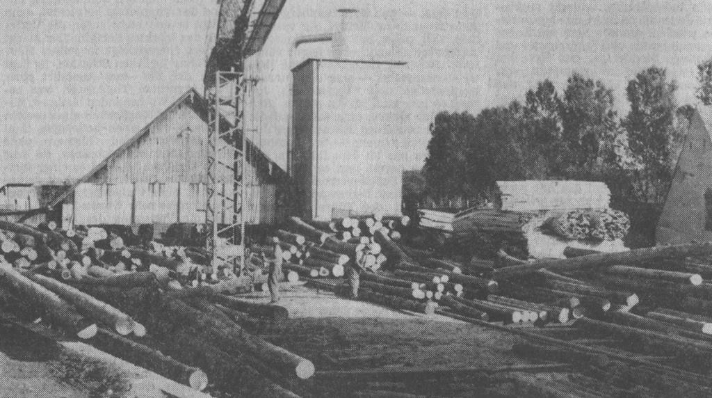 Sägewerk 1970